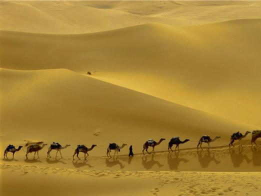 What threatens the steppes and deserts?
