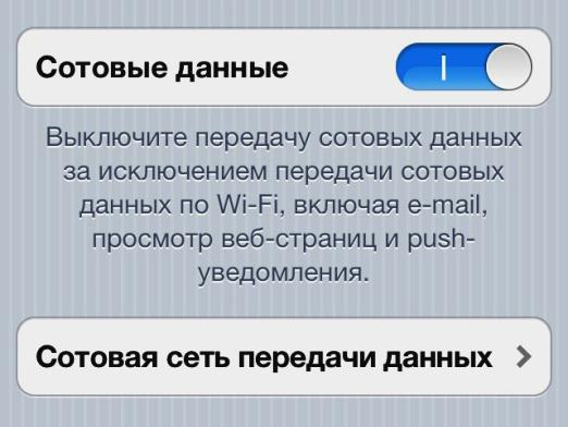 How to disable the Internet on the iPhone?