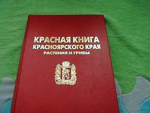 Why is the Red Book called red?