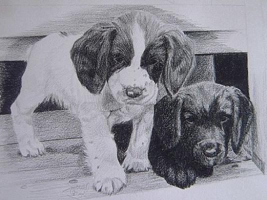 How to draw a puppy?