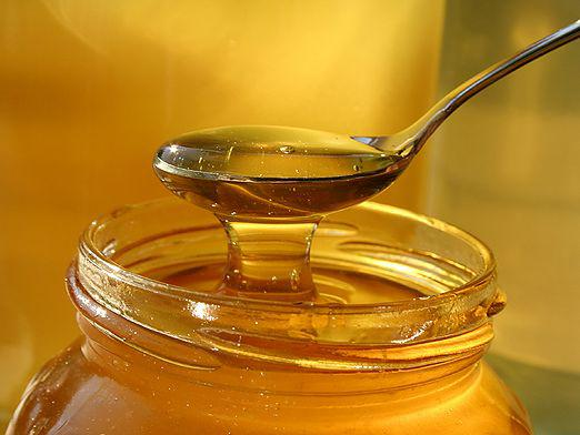 Can honey be pregnant?
