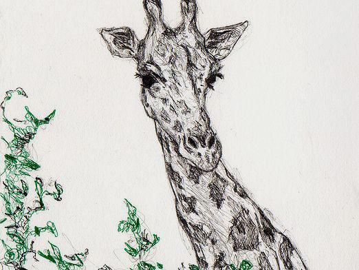 How to draw a giraffe?