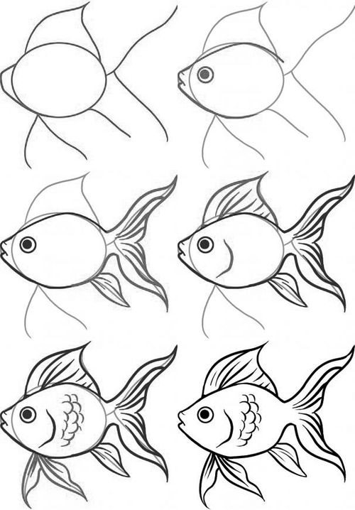 How to draw a goldfish