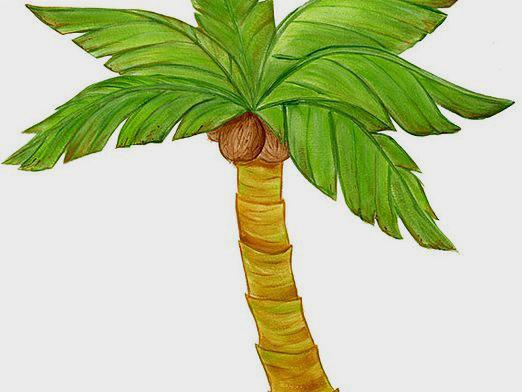 How to draw a palm tree?
