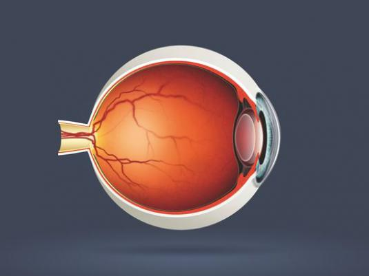 What is an eye?