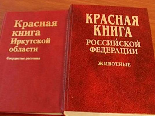 What is the Red Book?