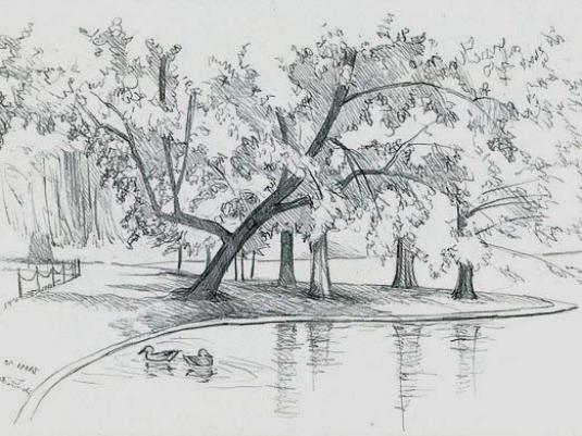 How to draw a park?
