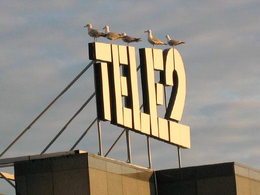 How to find out the tariff Tele2?