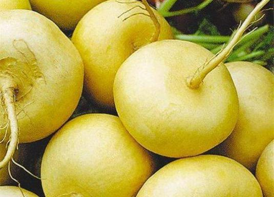 How to cook a turnip?