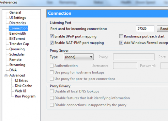 How to open ports through torrent?