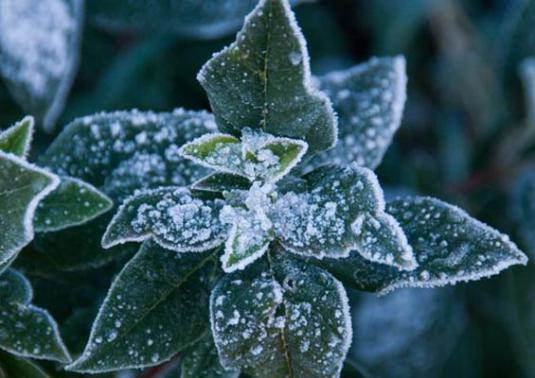 How does frost form?