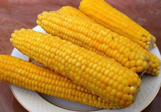 How to cook corn on the cob?