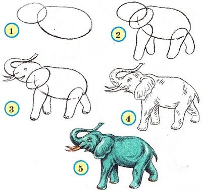 How to draw animal pencil