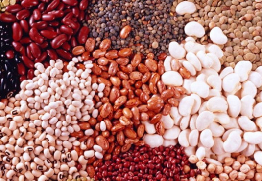 What is useful beans?