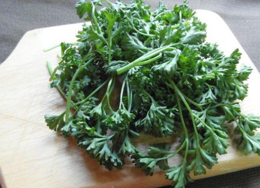 What is useful parsley?