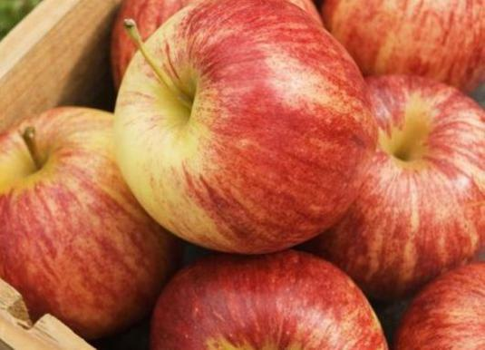 How to keep apples in the winter?