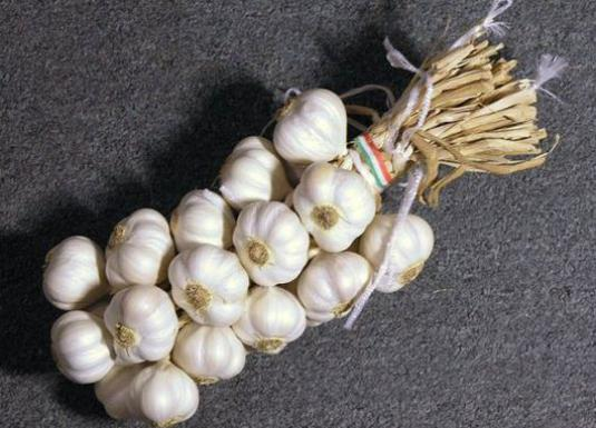 How to save garlic in the winter?