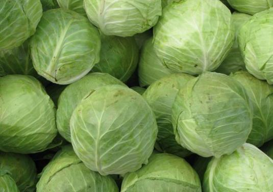 How to save cabbage for the winter?