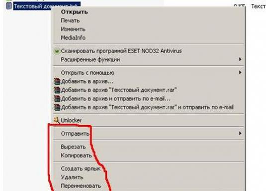 How to rename a document?