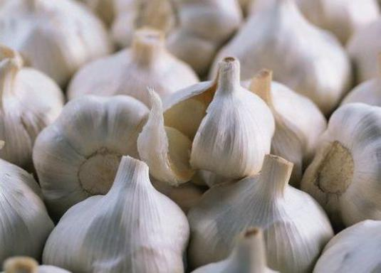 How to store garlic in the winter?