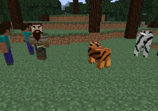 What is interesting Minecraft?