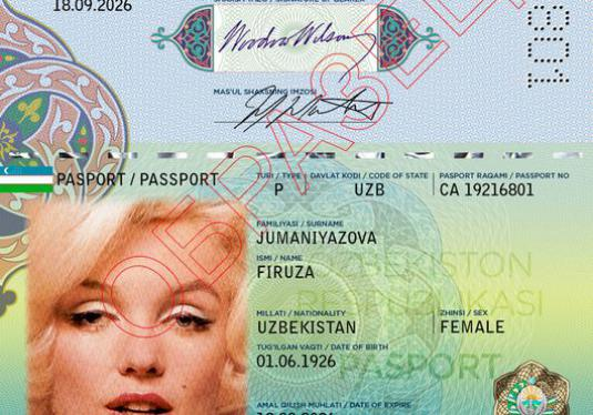 What is a biometric passport?