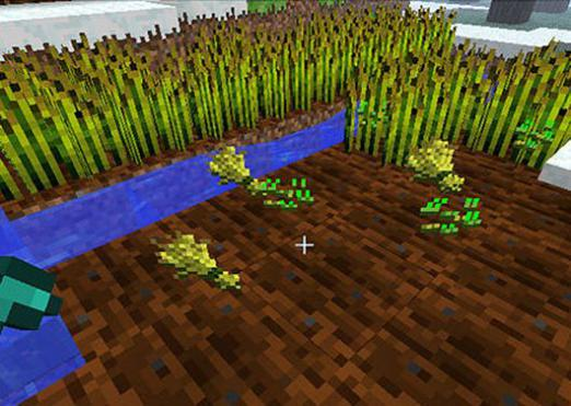 How to make wheat in Minecraft?