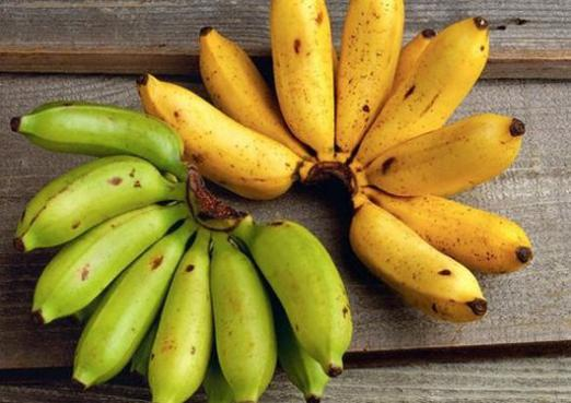 Is a banana a berry or a fruit?
