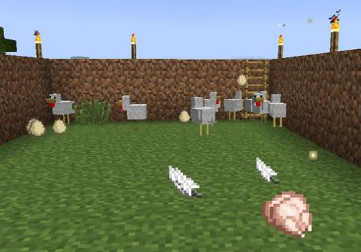 How to make a feather in Minecraft?