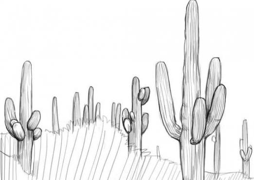 How to draw a cactus?