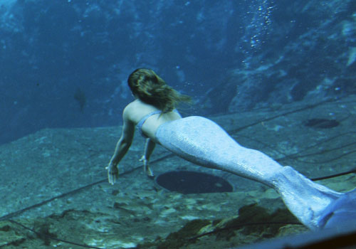 Are there mermaids?