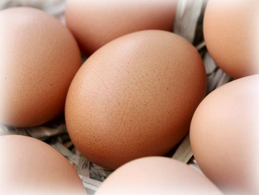 Why dream of eggs?