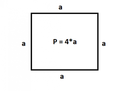 What is the perimeter of the square?