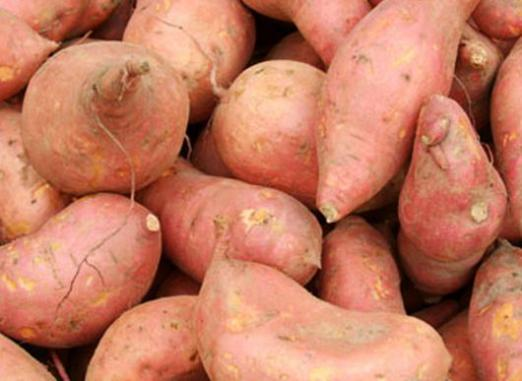 What is yam?