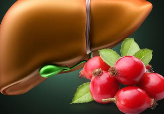 How to clean the liver of toxins?