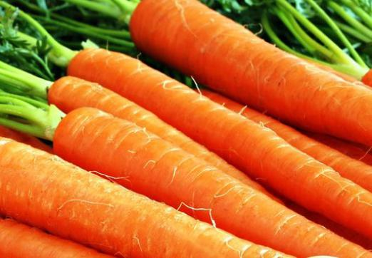 What dreams of carrots?