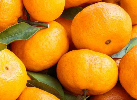 How many calories in tangerine?