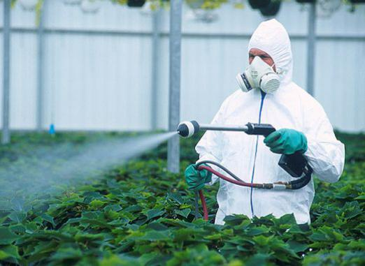 What are pesticides?
