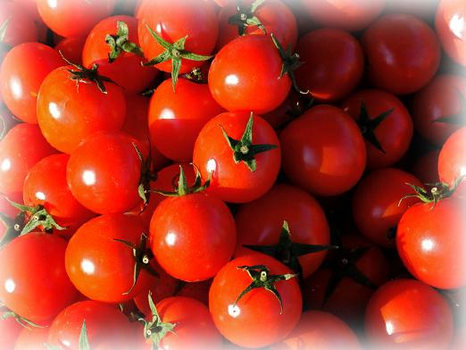 Why dream of tomatoes?