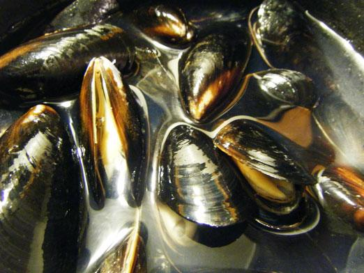 How much to cook mussels?