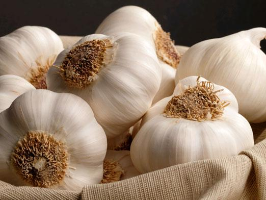 How to store garlic?