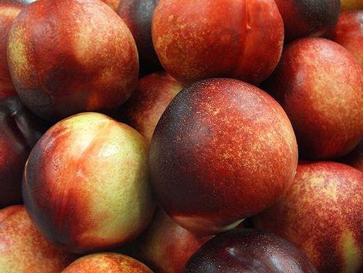 What is useful nectarine?