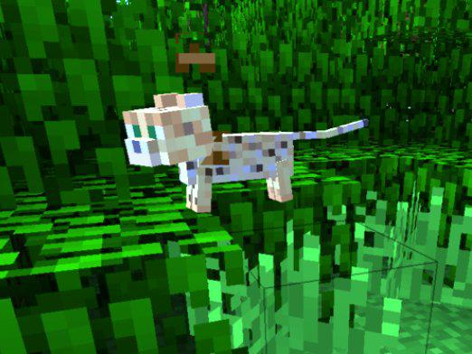 How to tame an ocelot in Minecraft?