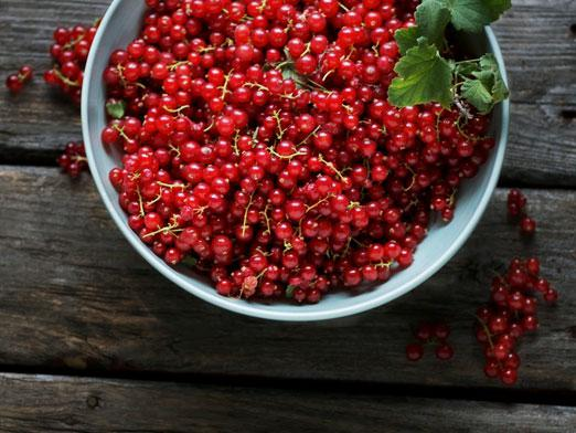 How to cook red currants?
