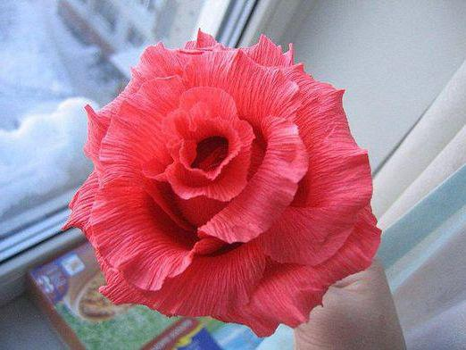 How to make a rose of corrugated paper?